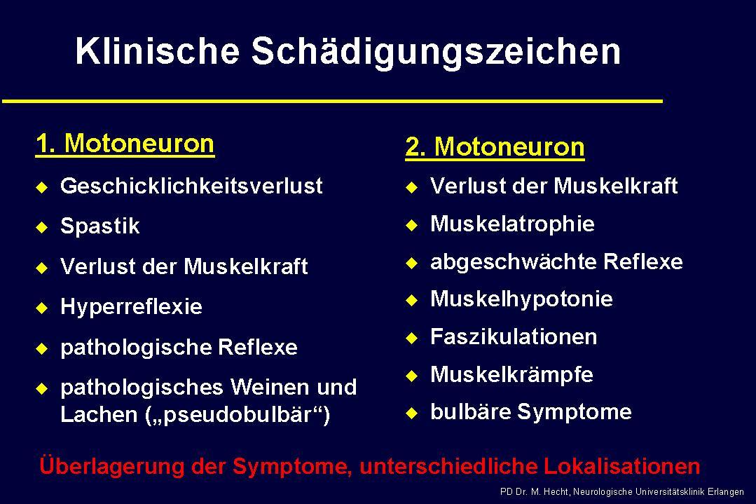 Diagnose ALS - Faktoren